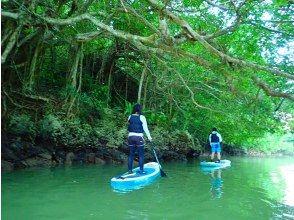 プランの魅力 獨木舟 の画像