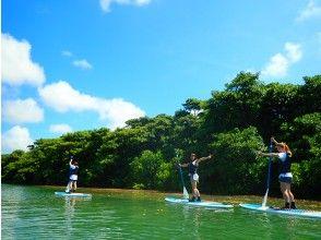プランの魅力 享受红树林和海洋! の画像