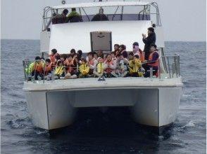 【沖縄・慶良間】揺れに強いカタマラン船で行く!ホエールウォッチングツアー※全額返済制度あり※)の魅力の説明画像