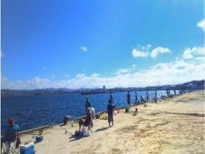 プランの魅力 釣りポイント【館山港・護岸】 の画像