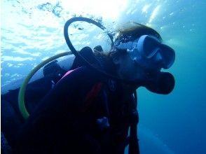 プランの魅力 Experience diving is not enough! の画像