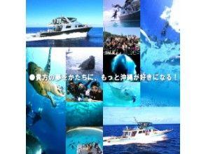 プランの魅力 貴方の夢をかたちに、もっと沖縄が好きになる! の画像