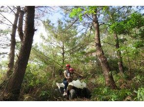 プランの魅力 Buggy forest course の画像
