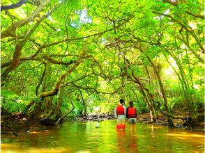プランの魅力 Jungle trekking の画像