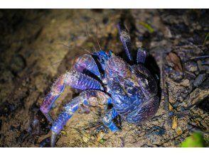 プランの魅力 天然天文馆 の画像
