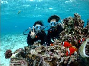 プランの魅力 You can enjoy diving. の画像
