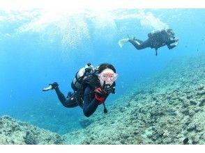 プランの魅力 一套完全保留,初學者和空白潛水者可以隨意♪ の画像
