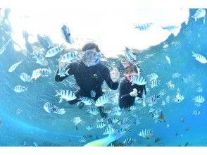 プランの魅力 新鲜和令人兴奋的鱼鱼! の画像
