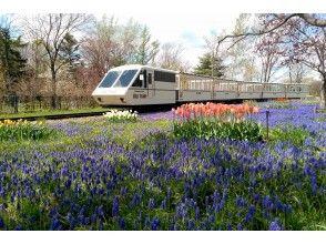 プランの魅力 百合が原公園もおすすめスポット の画像