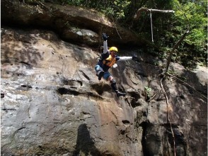 【沖縄・西表島】マングローブの川カヌー&キャニオ二ング(1日コース)の魅力の説明画像