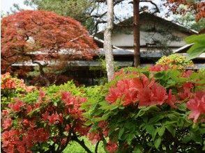 プランの魅力 Torigata大厅 の画像
