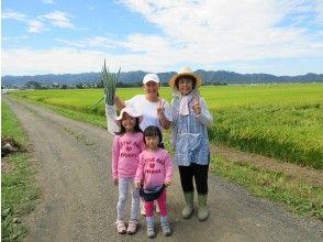プランの魅力 ミニ農作業体験 の画像
