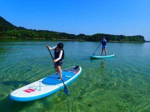 プランの魅力 Sea turtle snorkeling! の画像