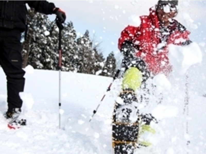プランの魅力 誰も踏み入れていない新雪の上を歩きます。 の画像