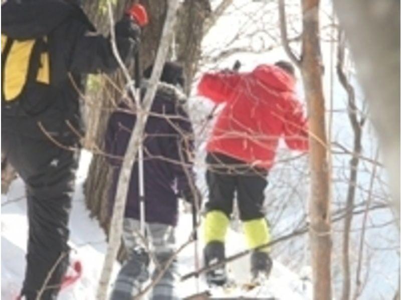 プランの魅力 ゲレンデから外れて木々の林の中を散策。 の画像