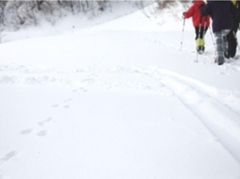 プランの魅力 動物の足跡を発見!これはうさぎの足跡。 山の中ではこんな発見もありますよ♪ の画像