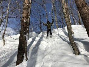 プランの魅力 Fluffy snow is OK even if you dive! の画像