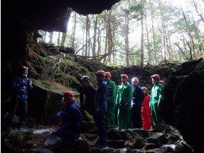 プランの魅力 氷柱のカーテンがあなたを待つ の画像