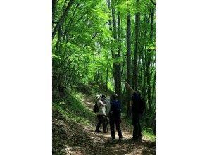 プランの魅力 Jizo Pass Historical Highway Course の画像