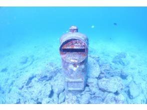 プランの魅力 浅瀬に広がるサンゴ畑 の画像