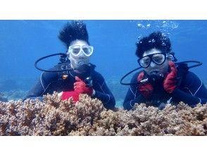 プランの魅力 수중 기념 촬영 の画像