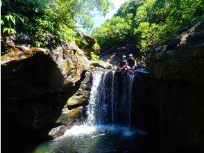 プランの魅力 由布島旅遊 の画像