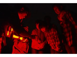 プランの魅力 赤いライトで目への負担を軽減! の画像
