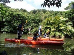 プランの魅力 カヌー(カヤック)を漕いで の画像