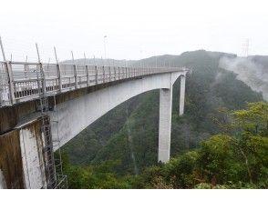 プランの魅力 この橋の上からジャンプします! の画像