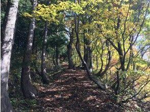 プランの魅力 The old road that Kenshin Uesugi walked の画像