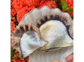 プランの魅力 珍珠被确认!您可以选择特级规格的Akoya珍珠牡蛎☆ の画像