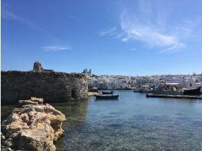 プランの魅力 【プラン例】ライブ中継でパロス島をご案内*ご希望に合わせてプランをおつくりさせていただきます の画像