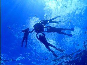 プランの魅力 透明度抜群の海 の画像