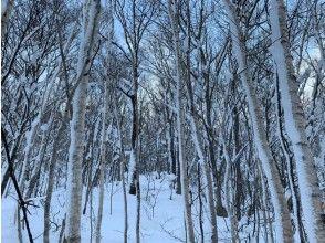 プランの魅力 安靜的雪山 の画像