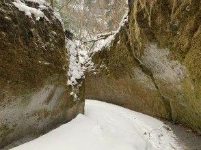 プランの魅力 苔蘚走廊 の画像