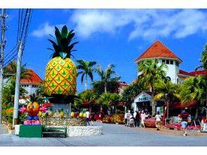 プランの魅力 名护菠萝园 の画像