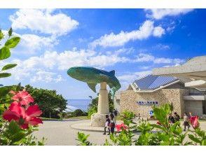 プランの魅力 强大的冲绳美丽海水族馆 の画像