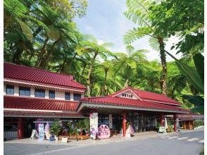 プランの魅力 DIN恐龙公园Yanbaru亚热带森林(Dino Park Nago) の画像