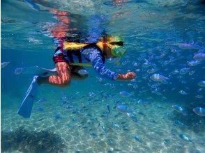 プランの魅力 幻の島では楽しい写真をたくさん撮りましょう! の画像
