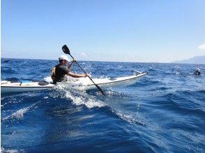 プランの魅力 Guided by a professional guide with 18 years of experience as a kayak guide の画像