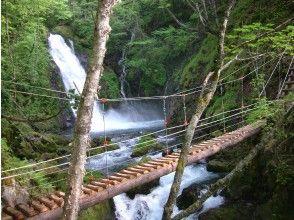 プランの魅力 横手滝と吊橋 の画像