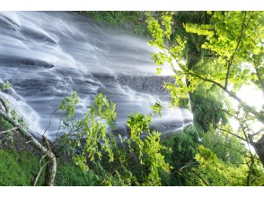 プランの魅力 久手御越滝③ の画像