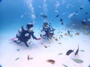 プランの魅力 サンゴ・魚たちに囲まれながらダイビング♪ の画像