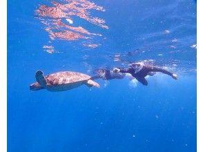 プランの魅力 午後はウミガメ探しのシュノーケリング♪ の画像