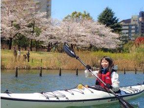 プランの魅力 Row of cherry blossom trees の画像