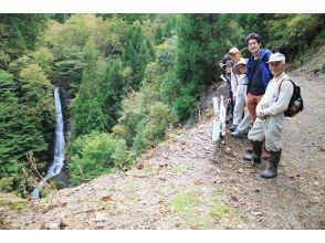 プランの魅力 You can enjoy the view from three places, the forest road directly above the waterfall and the whole view, and the waterfall basin! の画像