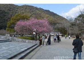 プランの魅力 Kikko Park strolling の画像