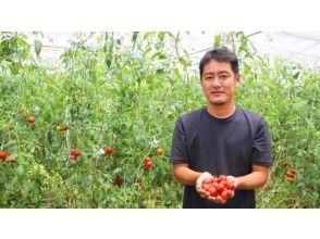 プランの魅力 約100年の歴史をもつ湘南佐藤農園 の画像