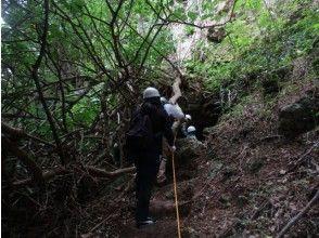 プランの魅力 沖縄戦跡国定公園 の画像
