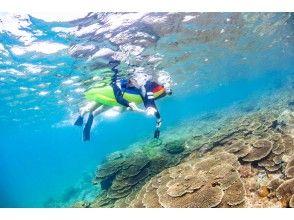 プランの魅力 透明度の高いサンゴ礁の海を気軽に の画像